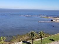 Punta Carretas (Montevideo), Ventas, Apartamentos